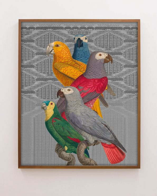 art with parrots
