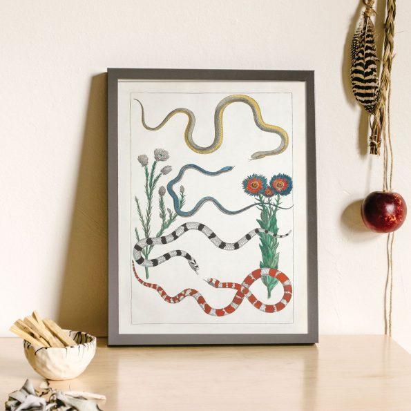 desert flower print