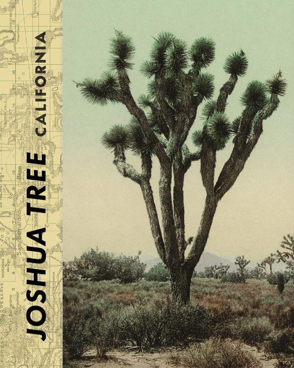 vintage joshua tree print