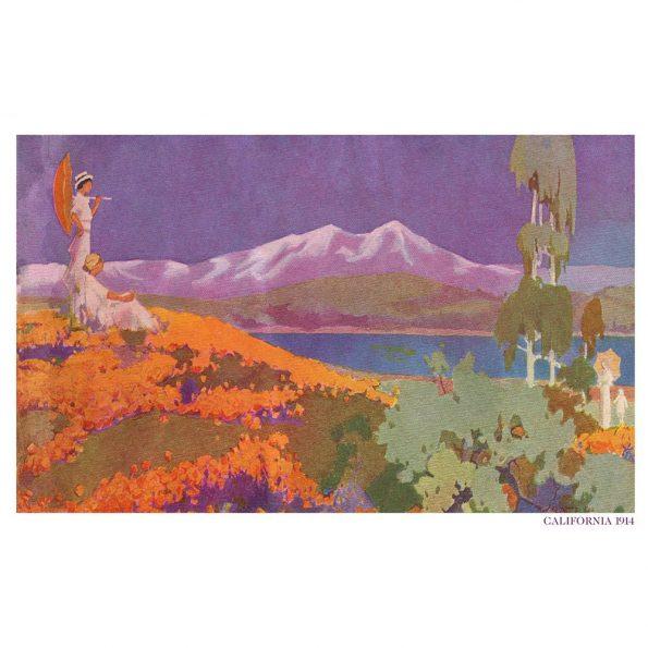 vintage california super bloom art