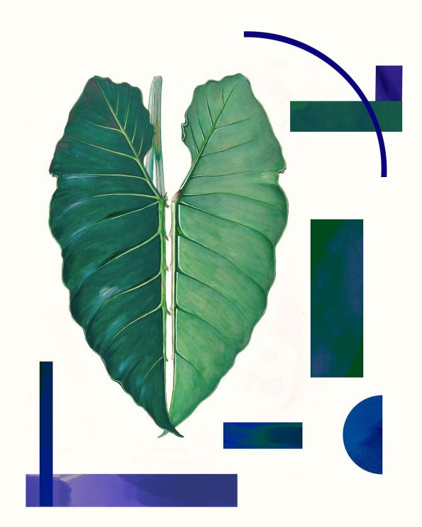 art deco botanical print