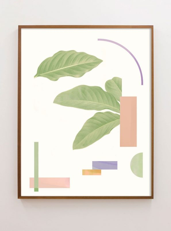 abstract geometric print with botanical collage