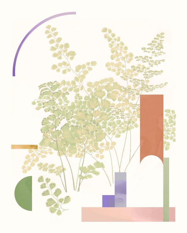 botanical collage with abstract geometric shapes