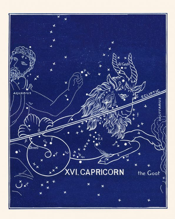 capricorn constellation print